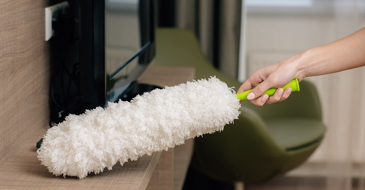 The Best Cleaners for Mold