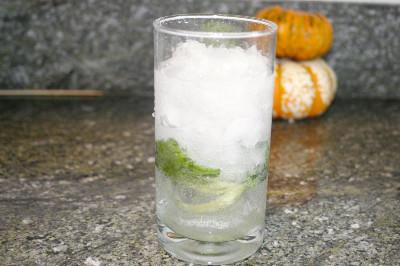 lemon-spritzer-1