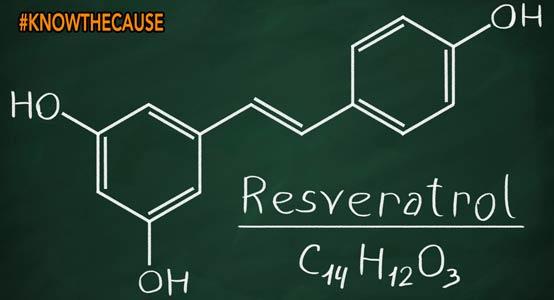 resveratrol-flu-alzhiemers
