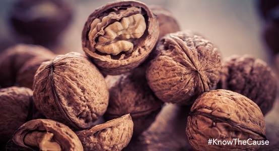 4-walnuts-554px