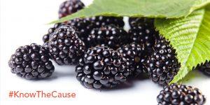 Blackberry Salsa