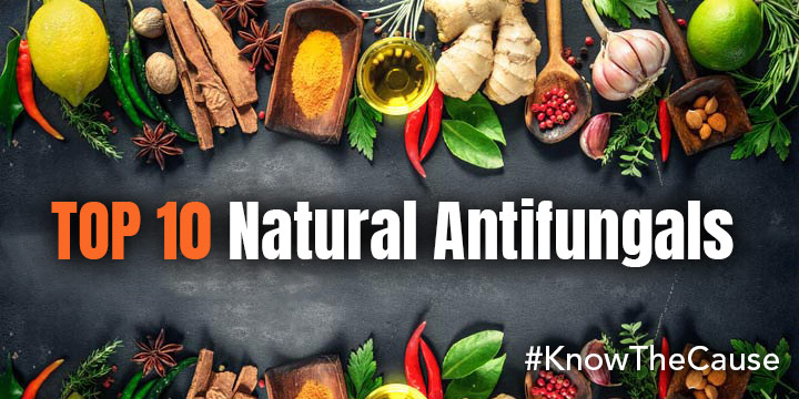 Natural Antifungals