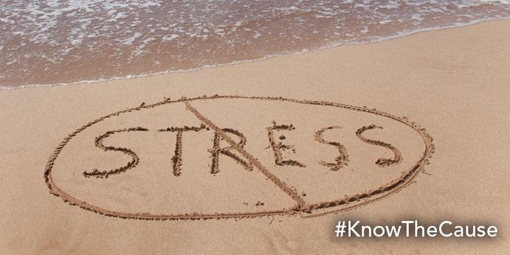 Anti-Stress Protocol